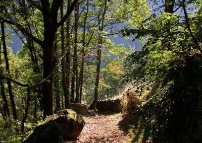 Abstieg nach San Romerio